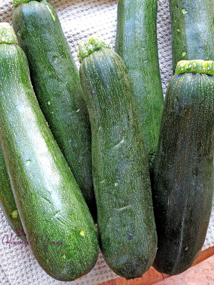 Pile of zucchini waiting to shredded