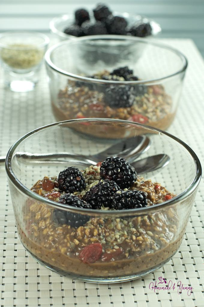 Chocolate Almond Oatmeal in bowl with fresh blackberries.