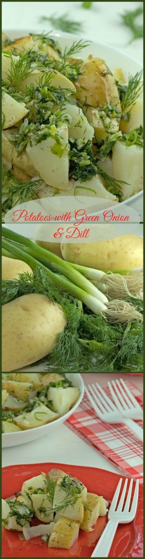 Potatoes with Green Onion & Dill have been a summer favourite for years. Fresh from the garden potatoes smothered in a green onion, dill & butter sauce. | homemadeandyummy.com