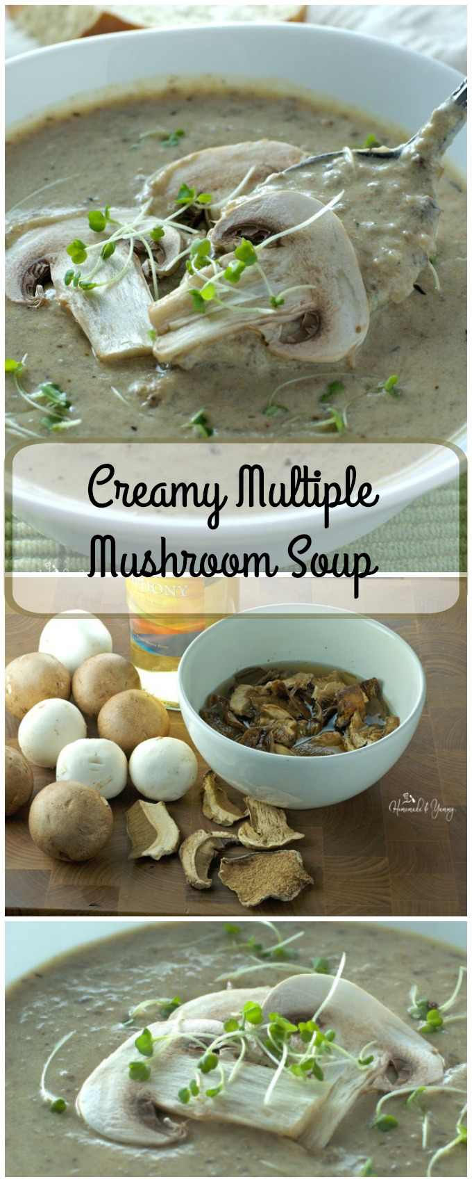 Fresh and dried mushrooms are used to make this Creamy Multiple Mushroom Soup. Thick, rich and earthy, perfect as an appetizer or main dish paired with some great bread. | homemadeandyummy.com