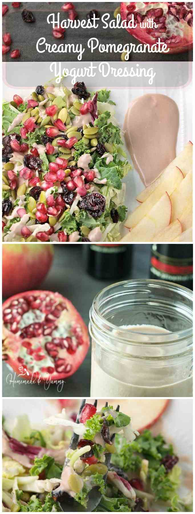 Harvest Salad with Creamy Pomegranate Yogurt Dressing long pin image.