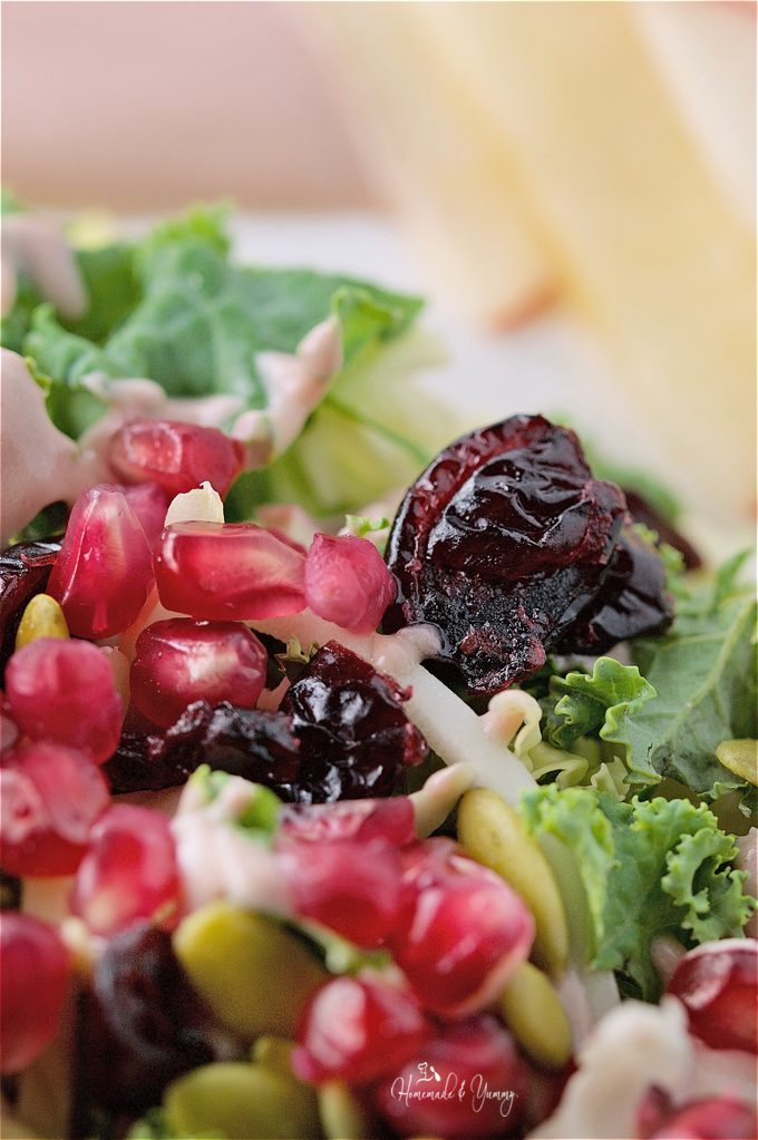 Close up of salad showing pomegranate seeds and cranberries.