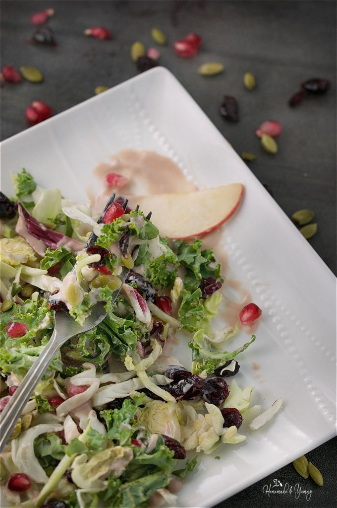 Harvest Salad with Creamy Pomegranate Yogurt Dressing combines the colours and flavours of fall. Perfect starter for holiday meals, or add some turkey and make a complete meal.|homemadeandyummy.com