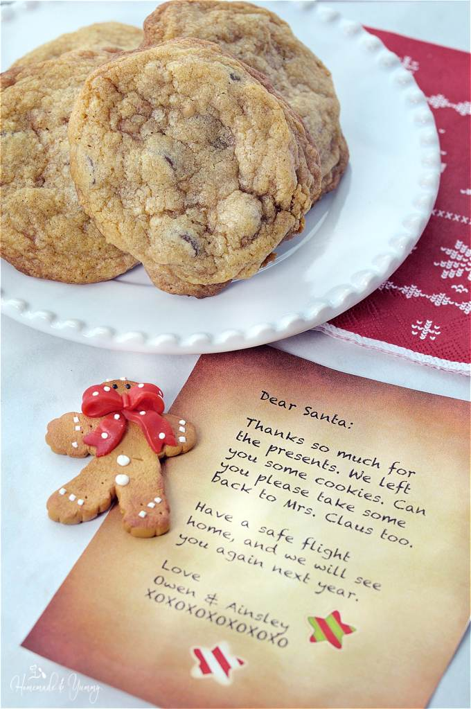 Close up shot of cookies on a plate, and a letter to Santa.