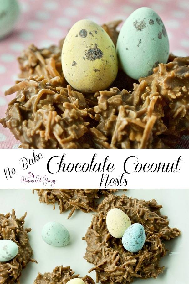 Easy No Bake Chocolate Coconut Nests Pin Image