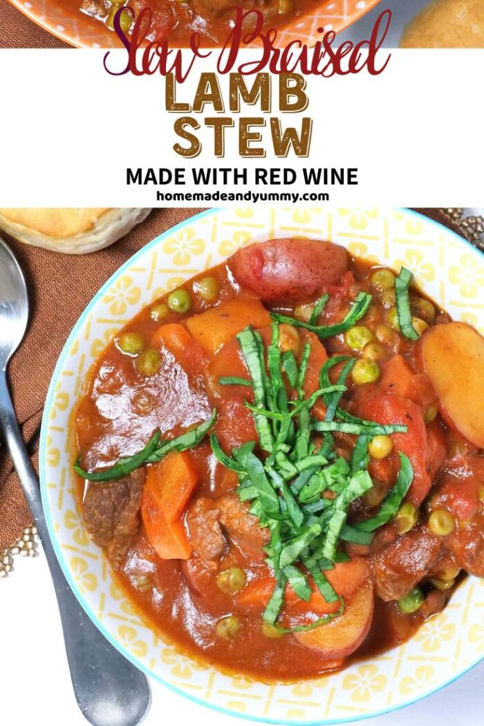 Red Wine Lamb Stew Pin Image