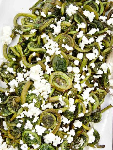 Roasted Fiddleheads Featured Image