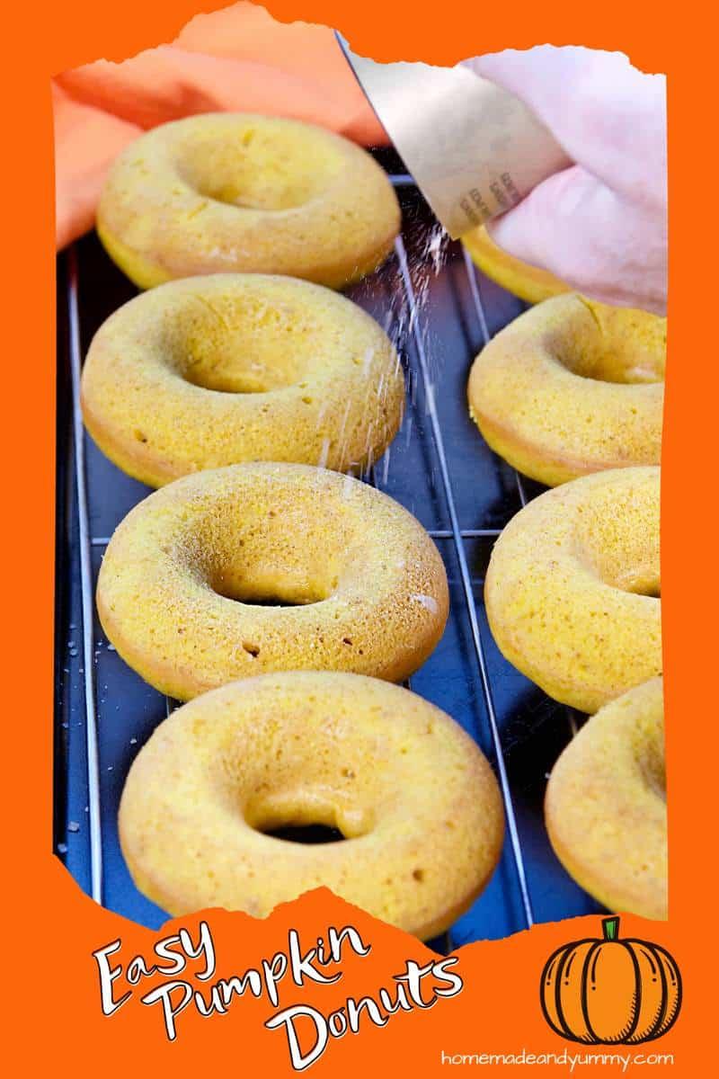 Pumpkin Spice Donuts Pin
