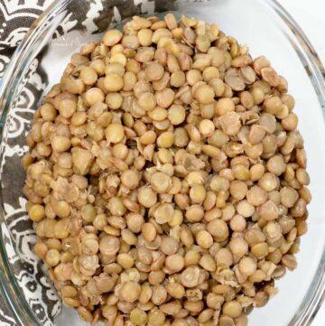 Marinated Lentils Featured Image