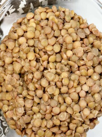 Marinated Lentils Featured Image