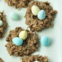 Chocolate Coconut Nests Featured Image